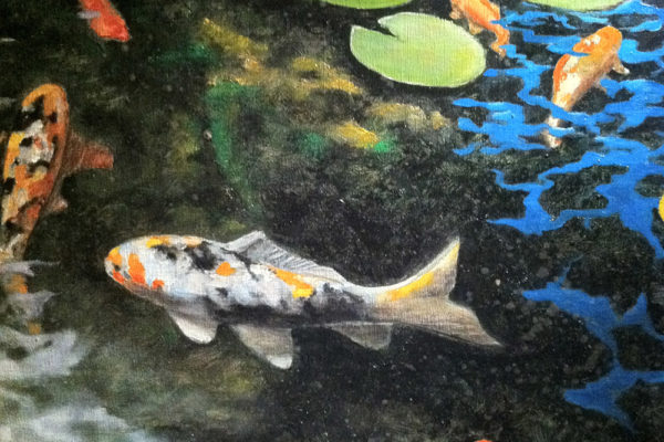 Courtney Koi Pond